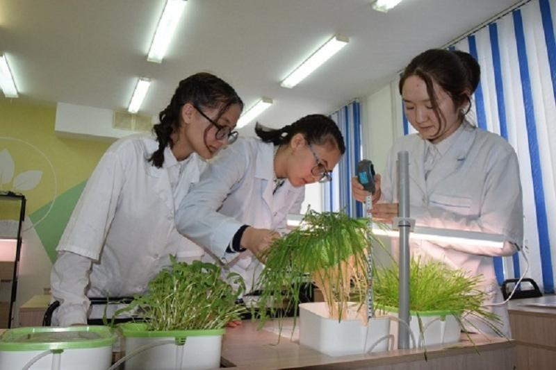 Лаборатории «зелёных» технологий открыли в трех костанайских школах