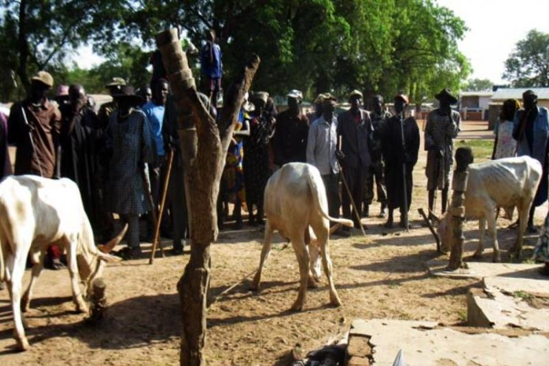42 killed during cattle raid in South Sudan