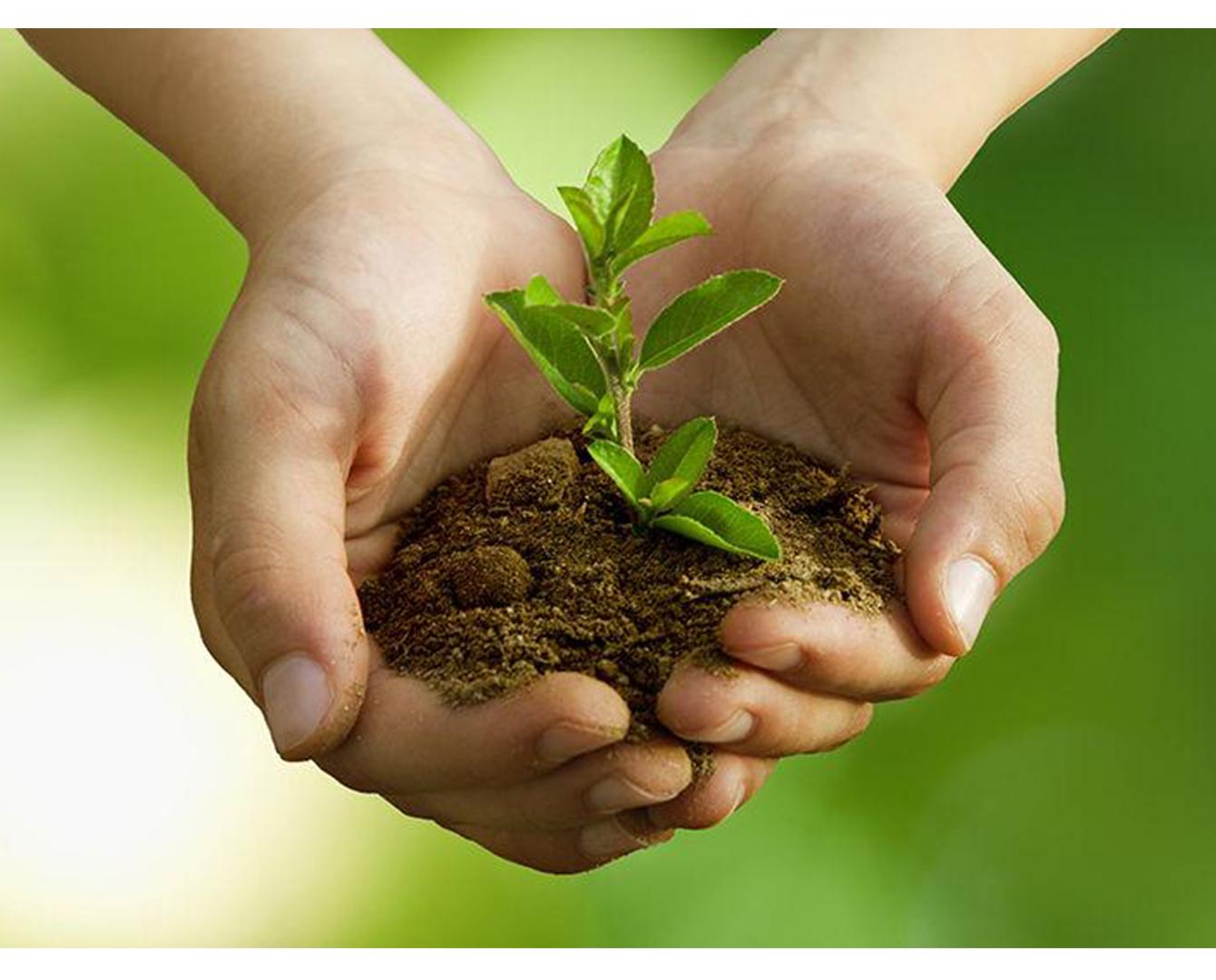 Рекордные 80 млрд тенге инвестировали в охрану окружающей среды в Казахстане