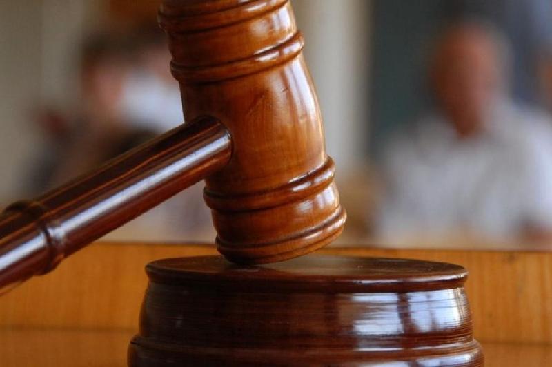 Суд вынес приговор в отношении двух мужчин, убивших мать и сына в ВКО