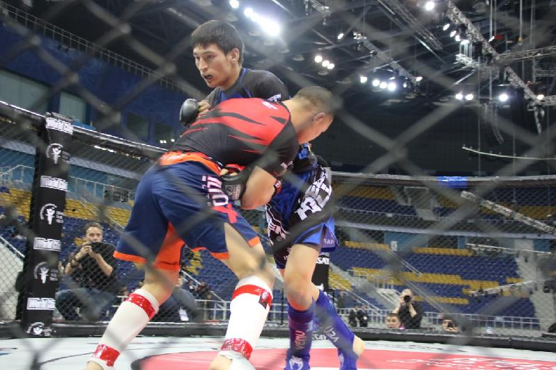 Рекордное число бойцов участвуют на чемпионате Казахстана по ММА
