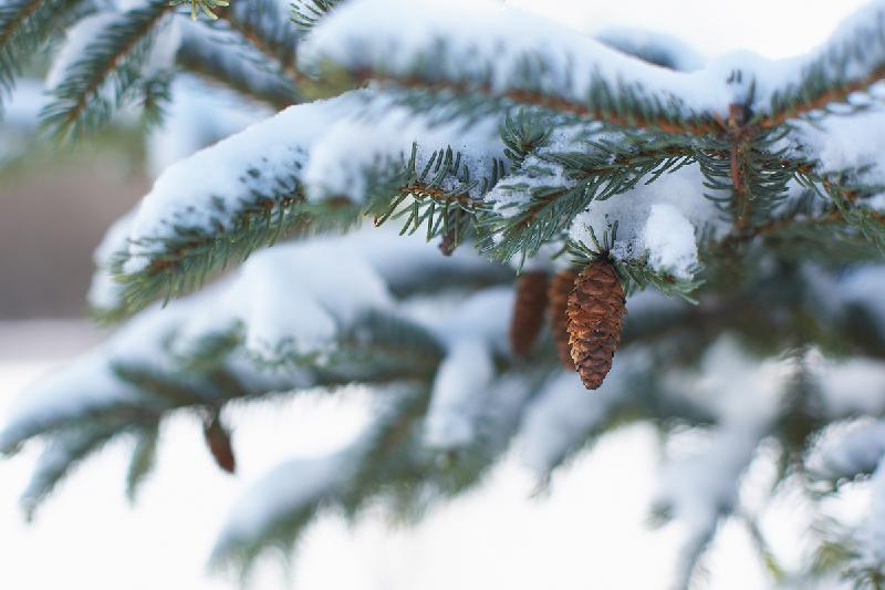 Most regions of Kazakhstan to enjoy weather without precipitation on Thursday