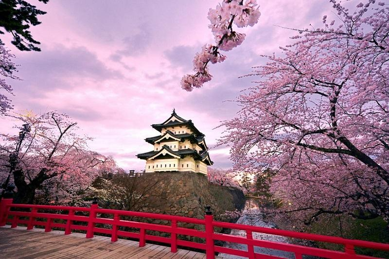 Astana to welcome 'Japanese Spring'