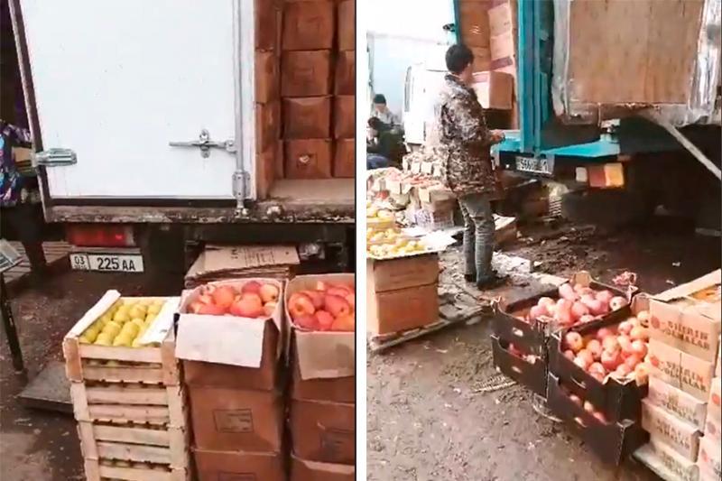 Два грузовика с запрещенными яблоками выдворили из Казахстана