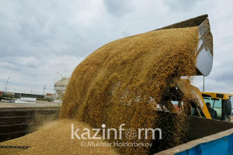 Kazakhstan to export above 2 mln tons of wheat