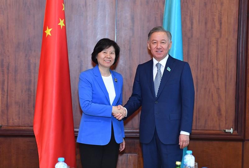 尼格马图林会见中国全国人大常委会副委员长沈跃跃