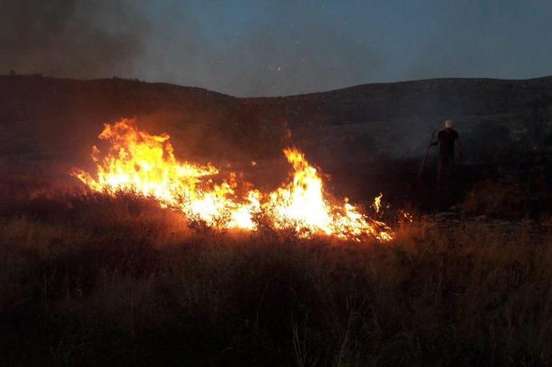 Первые случаи степных пожаров зафиксированы в ВКО