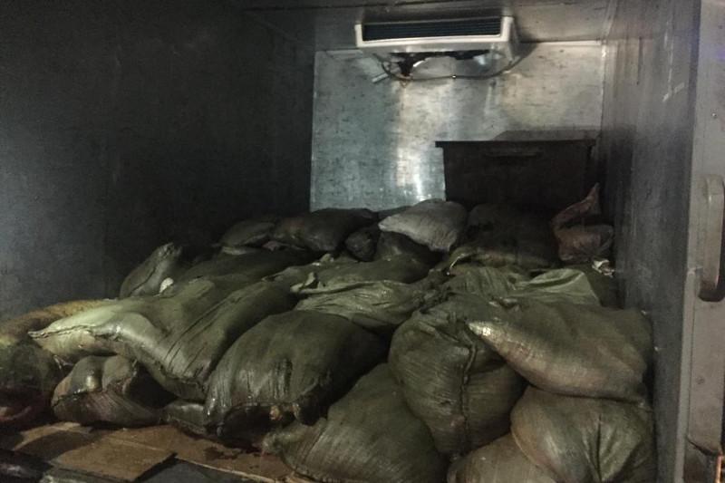 Более 1 тонны рыбы пытался нелегально провести житель Караганды
