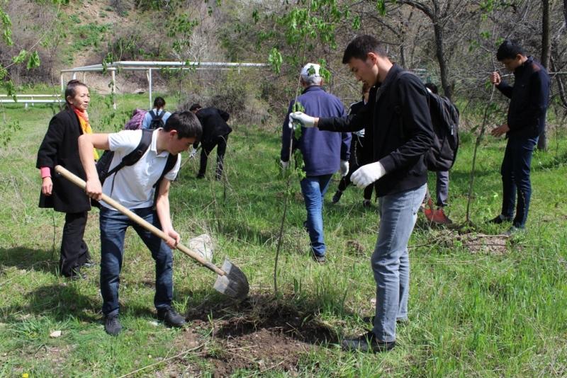 В рамках акции «Марш парков» на Медеу высадили более 100 саженцев деревьев