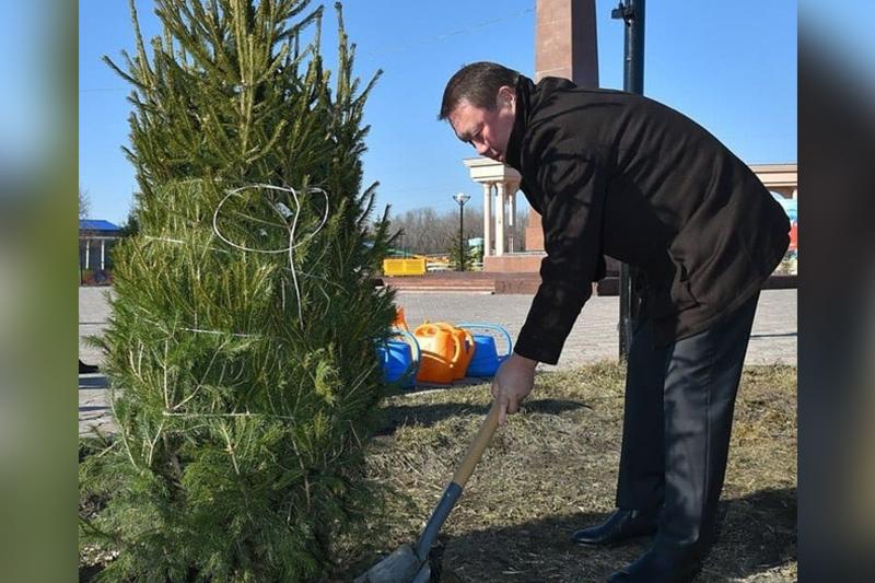 Деревья высадил на субботнике аким СКО