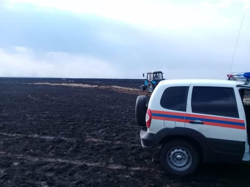 В Павлодарской области горел не лес, а сухая трава
