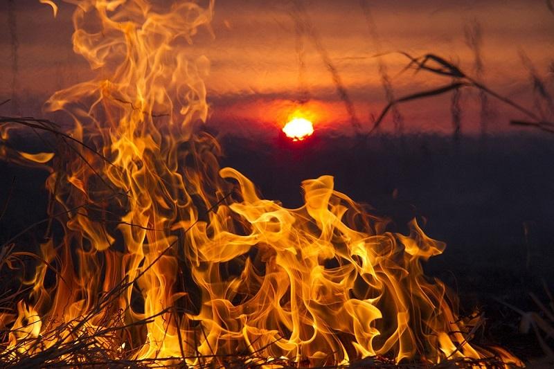 北哈州温度将直达33℃ 林火危险性增高