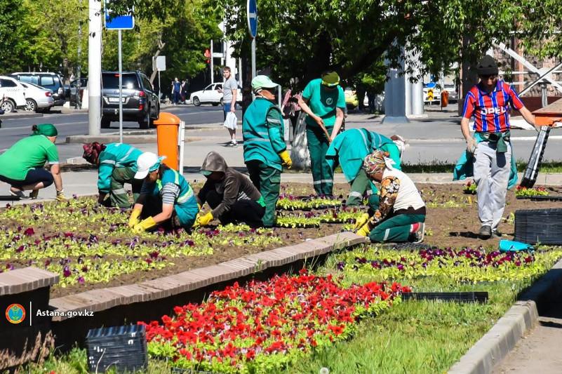 В столице высадят 8,6 млн цветов
