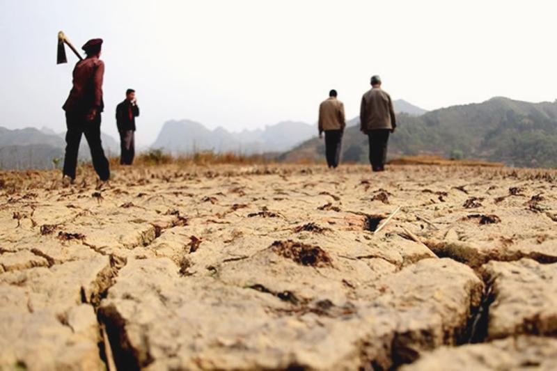 N. Korea suffers severest drought in 37 years: KCNA