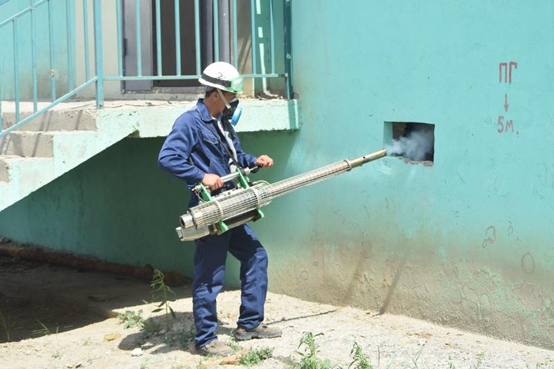 В Атырау на борьбу с комарами выделили 127,2 млн. тенге