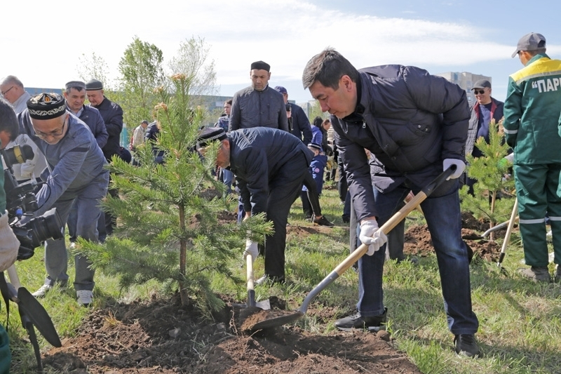400 деревьев посадили во время общеобластного субботника в Караганде