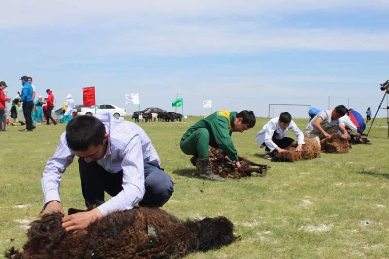 В стрижке овец и выпечке хлеба соревновалась молодежь в Туркестанской области