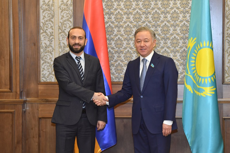 尼格马图林会见集安组织成员国议会代表