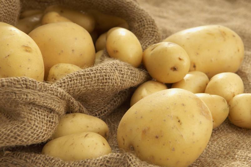 Казахстан снял запрет на ввоз фруктов и овощей из Кыргызстана