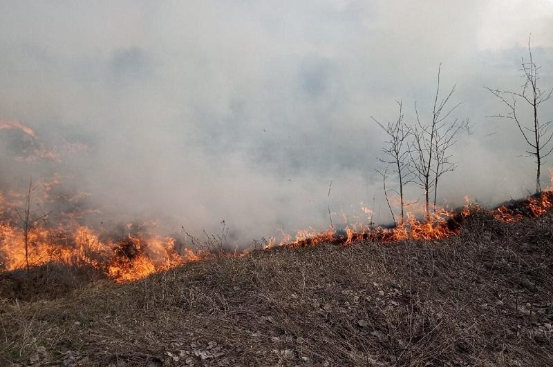 Дачи горят вблизи Петропавловска