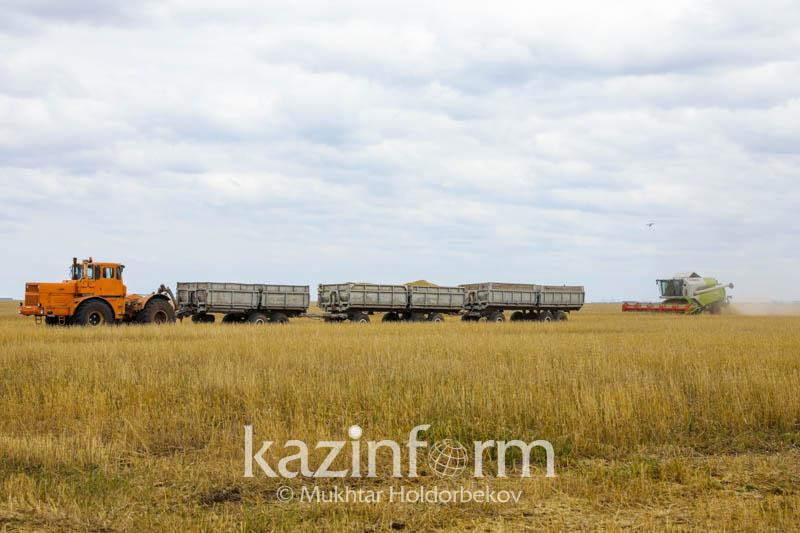 Сельхозкультуры в Казахстане планируют высадить на площади более 22,4 млн га