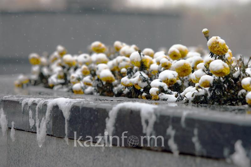 Заморозки и ветер ожидаются в двух регионах Казахстана
