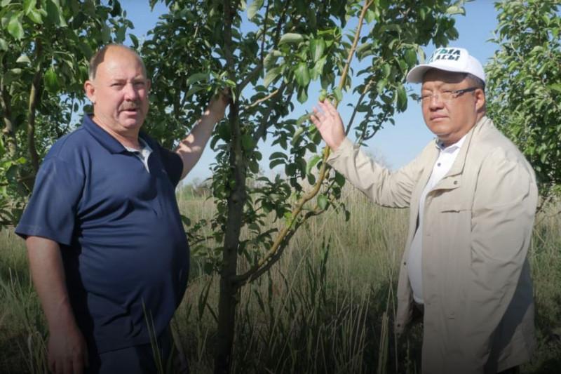 Толеутай Рахимбеков посетил крестьянские хозяйства Атырауской области