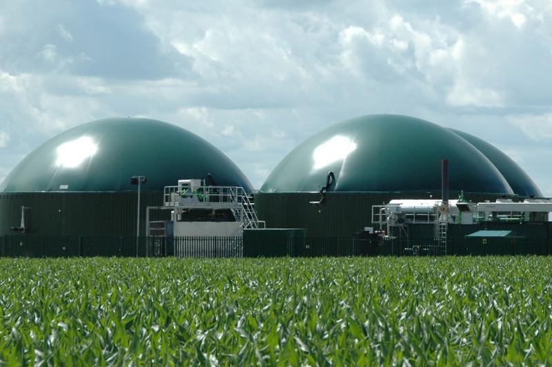 Биоэлектростанцию планируют построить в Карагандинской области