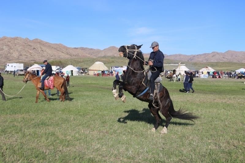 Қарағанды облысында «Көкмайса» этнофестивалі өтеді