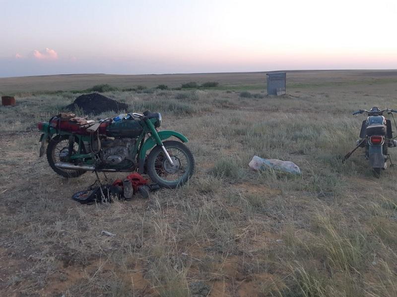 Факт незаконной охоты на сайгаков выявлен в Актюбинской области