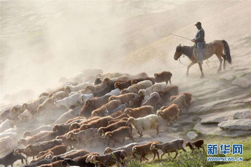 Моңғолия Қазақстан қонақтарын қабылдайды - Шетелдегі қазақтілді БАҚ-қа шолу