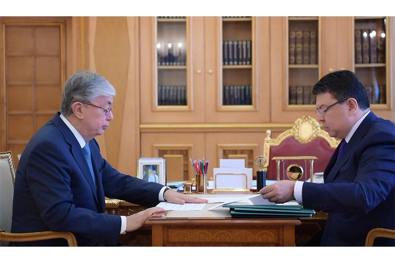 托卡耶夫总统接见能源部部长