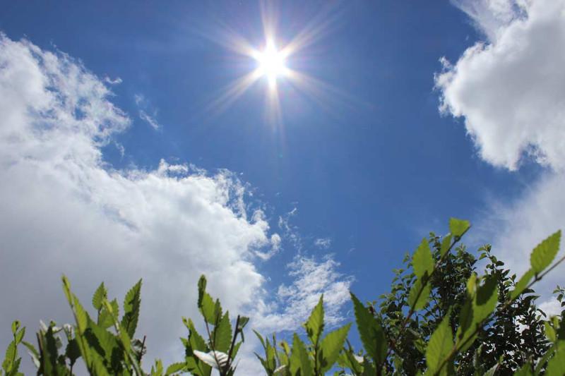 Погода без осадков ожидается на большей части Казахстана в четверг