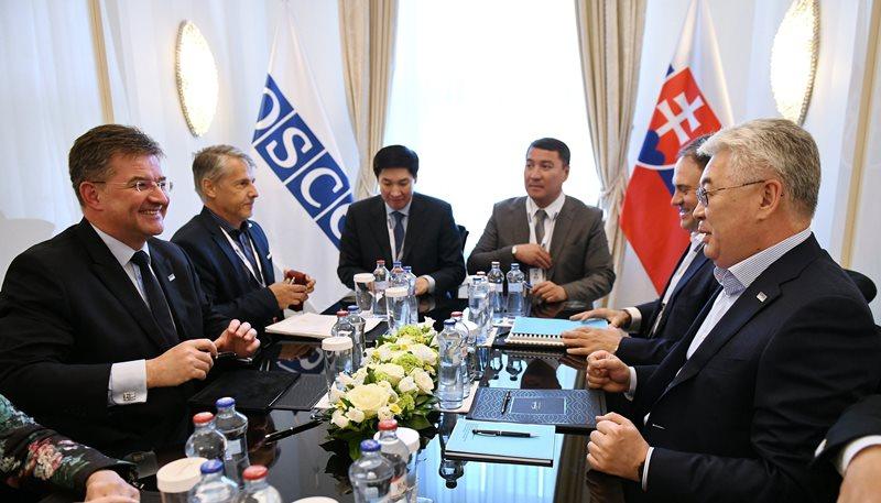 外长阿塔姆库洛夫会见欧安组织主席莱恰克