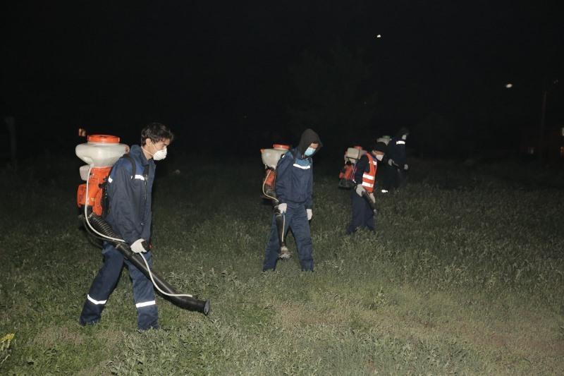 Дезинсекционные работы против мошек и комаров продолжаются в столице