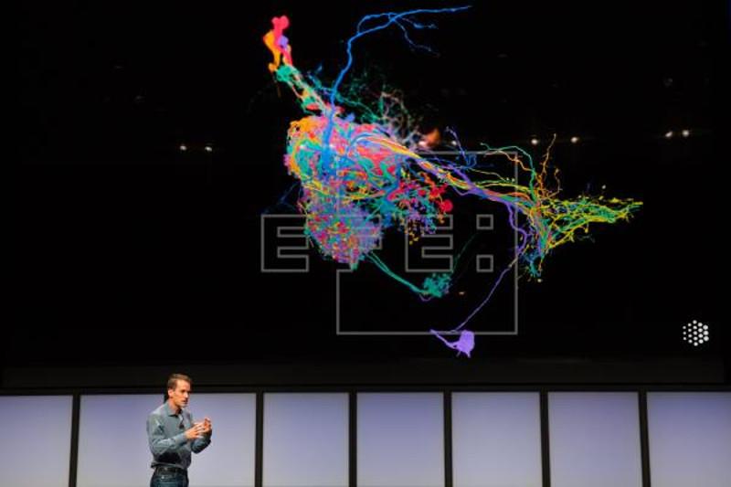 Google backs AI to solve global issues