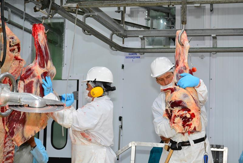 阿克莫拉州肉类加工厂计划加大对外出口