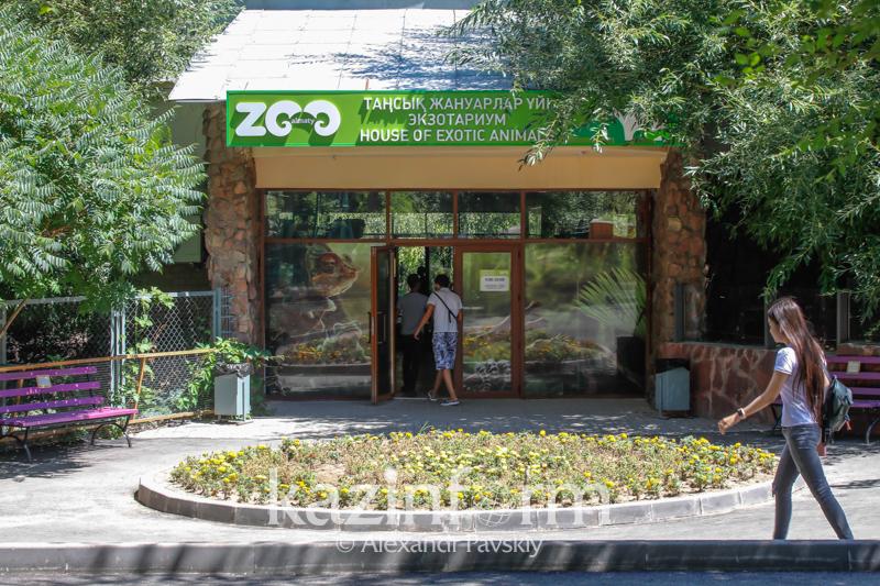 Как благоустраивают Алматинский зоопарк