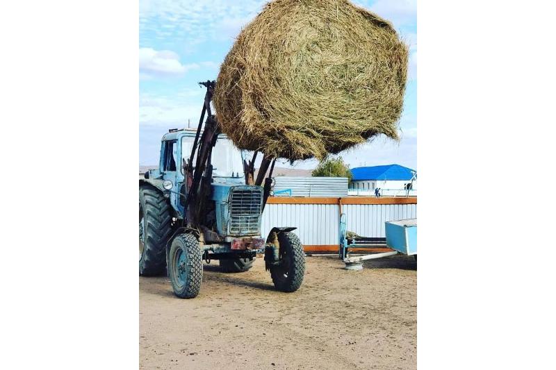 Фермеры раздали односельчанам сено в Карагандинской области