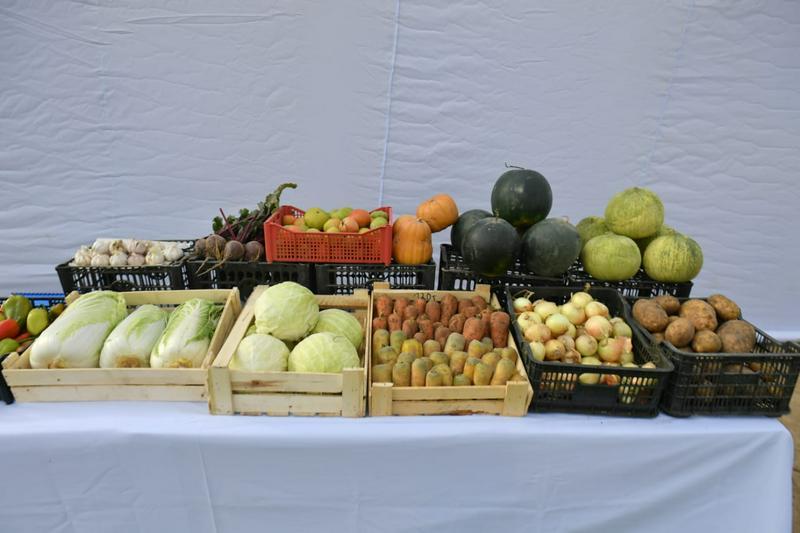 Аким Туркестанской области: Диверсификация сельского хозяйства - главное условие конкуренции6