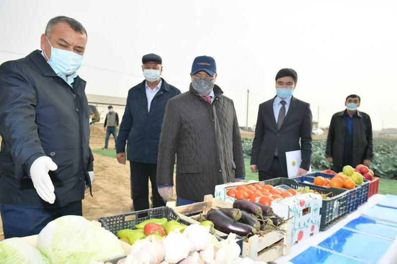 Аким Туркестанской области: Диверсификация сельского хозяйства - главное условие конкуренции1