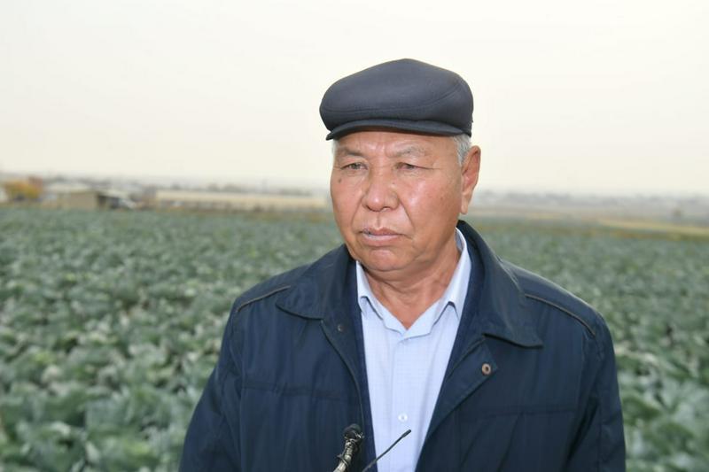 Аким Туркестанской области: Диверсификация сельского хозяйства - главное условие конкуренции3