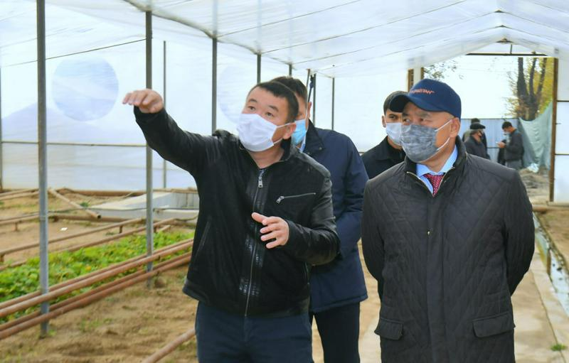 Аким Туркестанской области: Диверсификация сельского хозяйства - главное условие конкуренции2