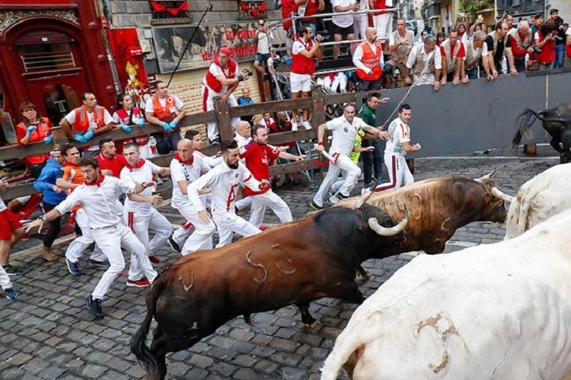 Пять человек пострадали во время забега быков в Испании