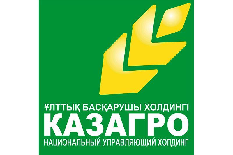 Холдинг «КазАгро» должен быть оперативно реформирован – Президент РК