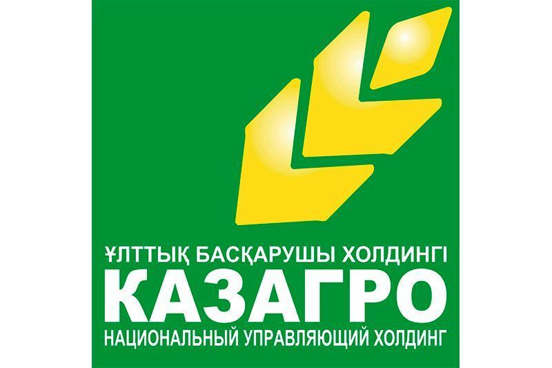 «ҚазАгро» холдингін жедел реформалау керек – Президент