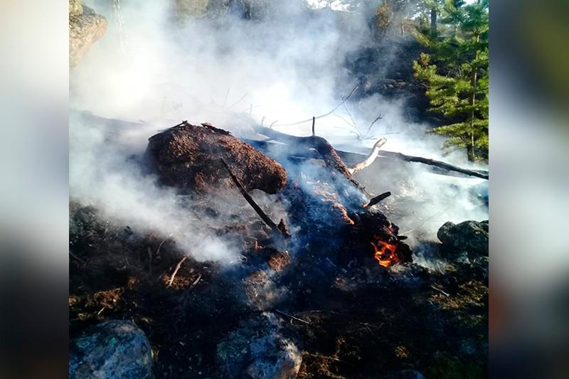 150 человек тушат пожар в Баянаульском нацпарке
