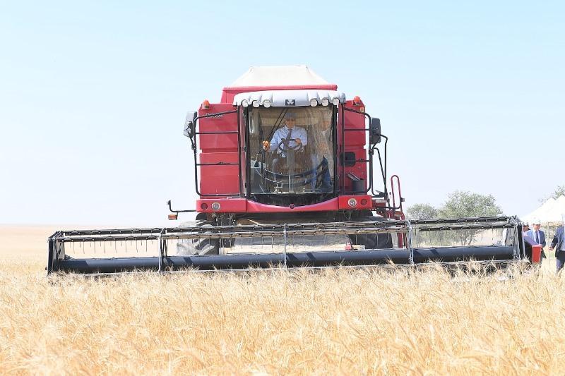 Умирзак Шукеев принял участие в уборке зерна