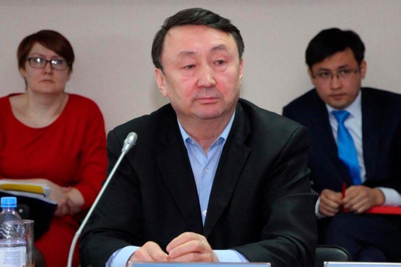 Глава государства каждому объяснил, что предстоит реальная работа – Жалгас Алман