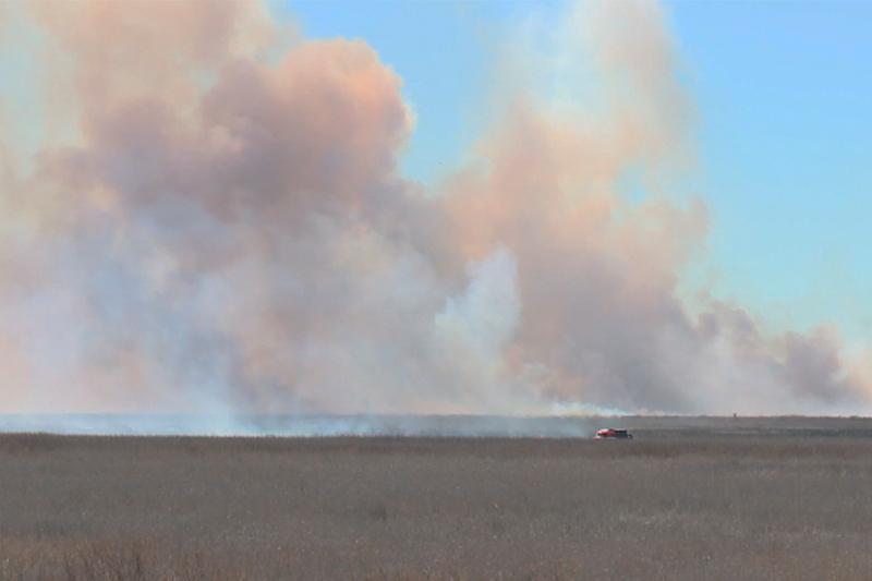 В Атырау ликвидируют пожар в природном заповеднике